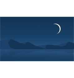 Landscape of desert at night vector image