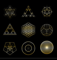 sacred geometry golden design elements vector image