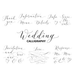 Wedding hand written calligraphy set isolated on vector