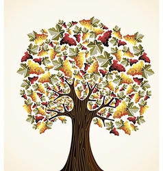 Wine and grapes tree vector