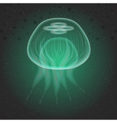 Jellyfish The underwater world vector image vector image
