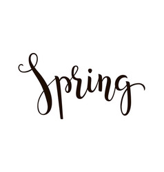spring - hand-drawn lettering decoration text on vector image vector image