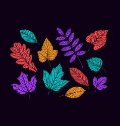 autumn decorative leaves set nature concept vector image