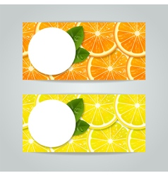 Banners set with citrus fruits vector