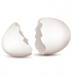broken egg vector image