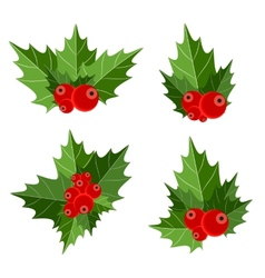 Christmas Berry Sign vector