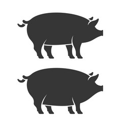 Pig icon set two fat pork vector