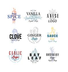 Spice logo design set vanilla anise clove vector