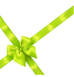 light green realistic bow with ribbons vector image
