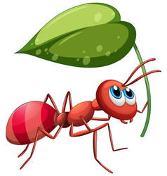Ant holding green leaf vector