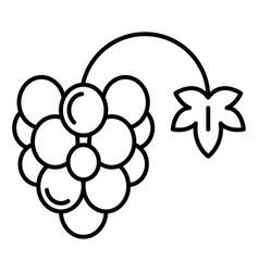 Farm grape icon outline style vector