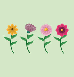 foliage nature flowers vector image