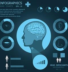 Head Infocharts vector image
