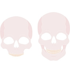 Skull Icon Set vector image