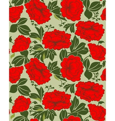 red peonies vector image vector image