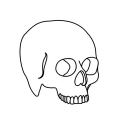 silhouette side view human skull icon flat vector image
