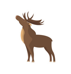bull elk isolated icon vector image