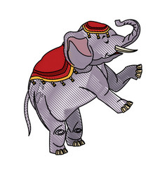 circus elephant as acrobat animal standing trick vector image