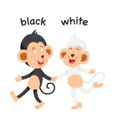 Opposite black and white vector