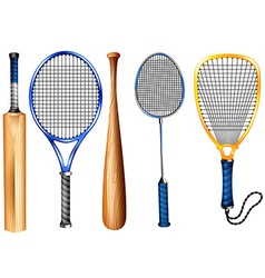 Rackets and bat vector image