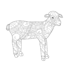 Sheep Coloring for adults vector image