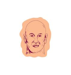 Bald caucasian male head drawing vector