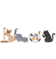 cute cats different breeds in various poses vector image