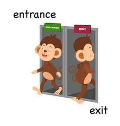 Opposite entrance and exit vector