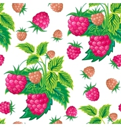 pattern raspberry hand painted fruit seamless vector image