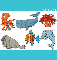 sea life cartoon animal species characters set vector image