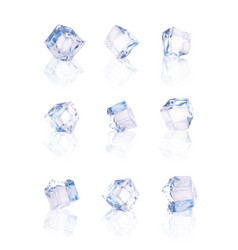 set of nine transparent ice cubes vector image