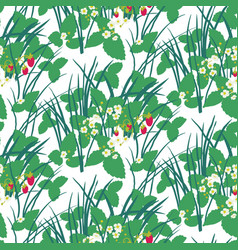 strawberry field in the forest seamless pattern vector image