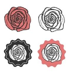 Vintage hand drawn rose logo emblem sign vector image