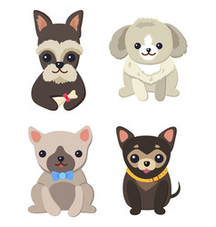 dogs variety collection poster vector image