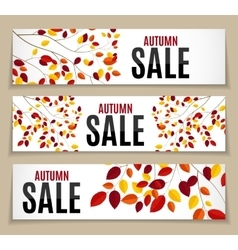 Autumn leaves sale background vector