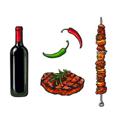 bbq elements - wine bottle steak meat of stick vector image