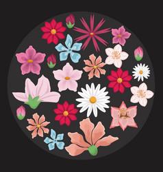 black background with decorative circular border vector image