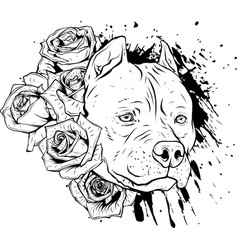 draw in black and white head dog with roses vector image
