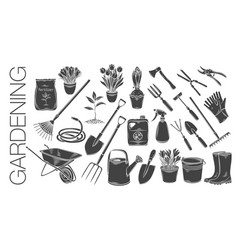 gardening tools and plants vector image