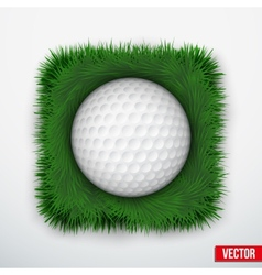 Icon symbol golf ball in green grass vector image
