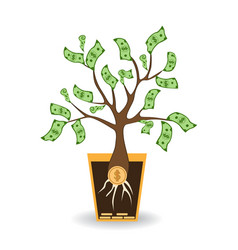 money tree growing from a coin root green cash vector image