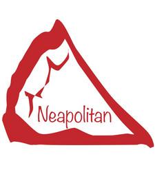 Pizza slice neapolitan vector