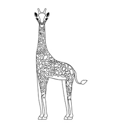 Giraffe wild animal vector