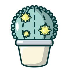 astrophytum cactus icon cartoon style vector image