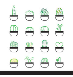 Cactus line icon set vector