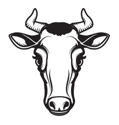 Cow head isolated on white background design vector