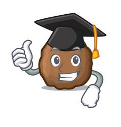 Graduation meatball character cartoon style vector
