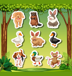 set of animal sticker vector image