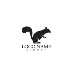 Squirrel logo and symbols vector