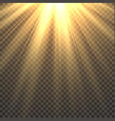 sunlight isolated sun light effect golden sun vector image